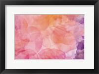 Framed Flores Compuestas 1