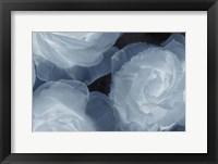 Framed Rosas Azules 2