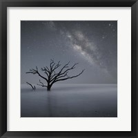 Framed Milky Way In Botany Bay 1