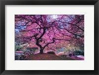 Framed Pink Tree 2