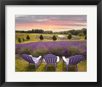 Framed Lavender Chairs, Horton Bay, Michigan '14-color