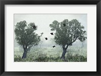 Framed Crows In the Mist