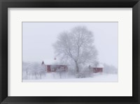 Framed Winter Idyll