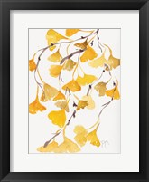 Framed Golden Gingko A