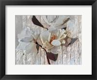 Framed Magnolia1