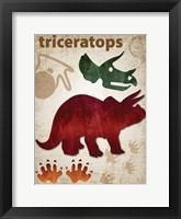 Framed Triceratops Dinosaur