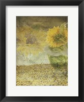Framed Dear Sunflower Field