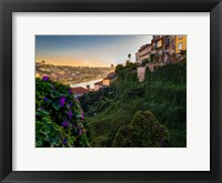 Framed Portugal Porto Garden