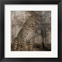 Framed Wild Jungle 1