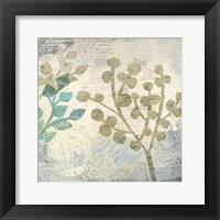 Framed Botanical Postale 1