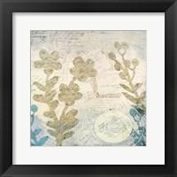 Framed Botanical Postale 2
