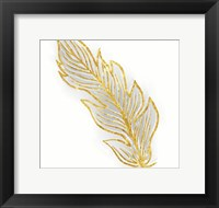 Framed Phoenix Feather 1