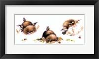 Framed Bird And Ladybug