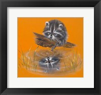 Framed Reflective Racoon - 35A