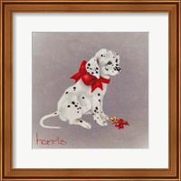Framed Dalmation Pup