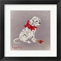 Framed Dalmation Pup