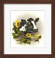 Framed Bull & Sunflowers