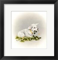 Framed Little Lambsy Divey