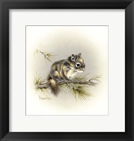 Framed Tattle-Tail Baby