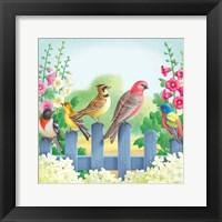 Framed Songbirds On Fence
