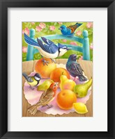 Framed Birds And Fruits
