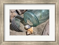 Framed Two Shells Mason Jar