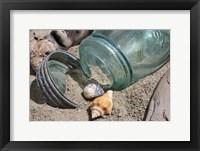 Framed Two Shells Mason Jar