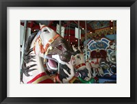 Framed Central Park Carousel