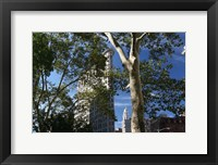 Framed Flatiron Building With Trees