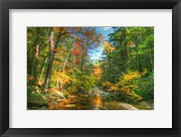 Framed Autumn Brook