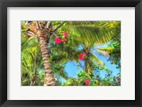 Framed Key West Pink Flowers Palm