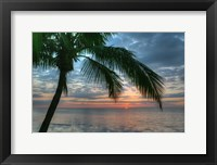 Framed Key West Sunrise One Palm