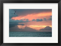 Framed Key West Sunset IV