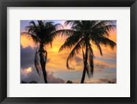 Framed Key West Two Palm Sunrise