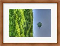 Framed Tuscan Cedar and Balloon