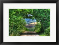 Framed Tuscan Tree Tunnel