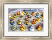 Framed Rubber Duckies