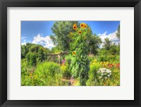 Framed Sunflowers and Garden