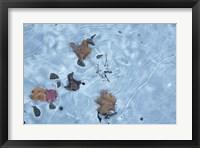 Framed Frozen 1