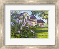 Framed Lilac Bush
