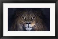 Framed Leo