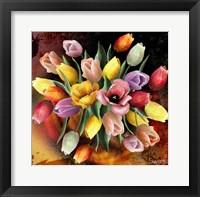 Framed Colors