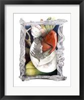 Framed Parrot