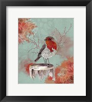 Framed Friendly Robin