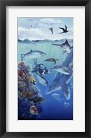 Framed Oceanic