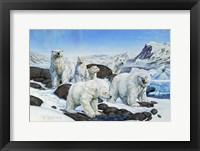 Framed Polar Bears