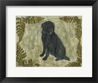 Framed Black Dog