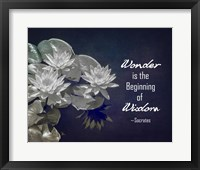 Framed Wonder is the Beginning of Wisdom Water Lily Black and White