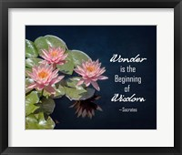 Framed Wonder is the Beginning of Wisdom Water Lily Color
