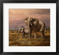 Framed Mother and Child (Elephants)